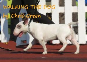 walkingthedog2